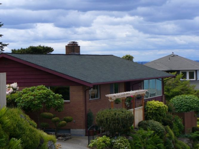 Bellevue Roofing Replacement Brown Home