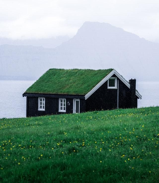 Black Home With Green Living Roof