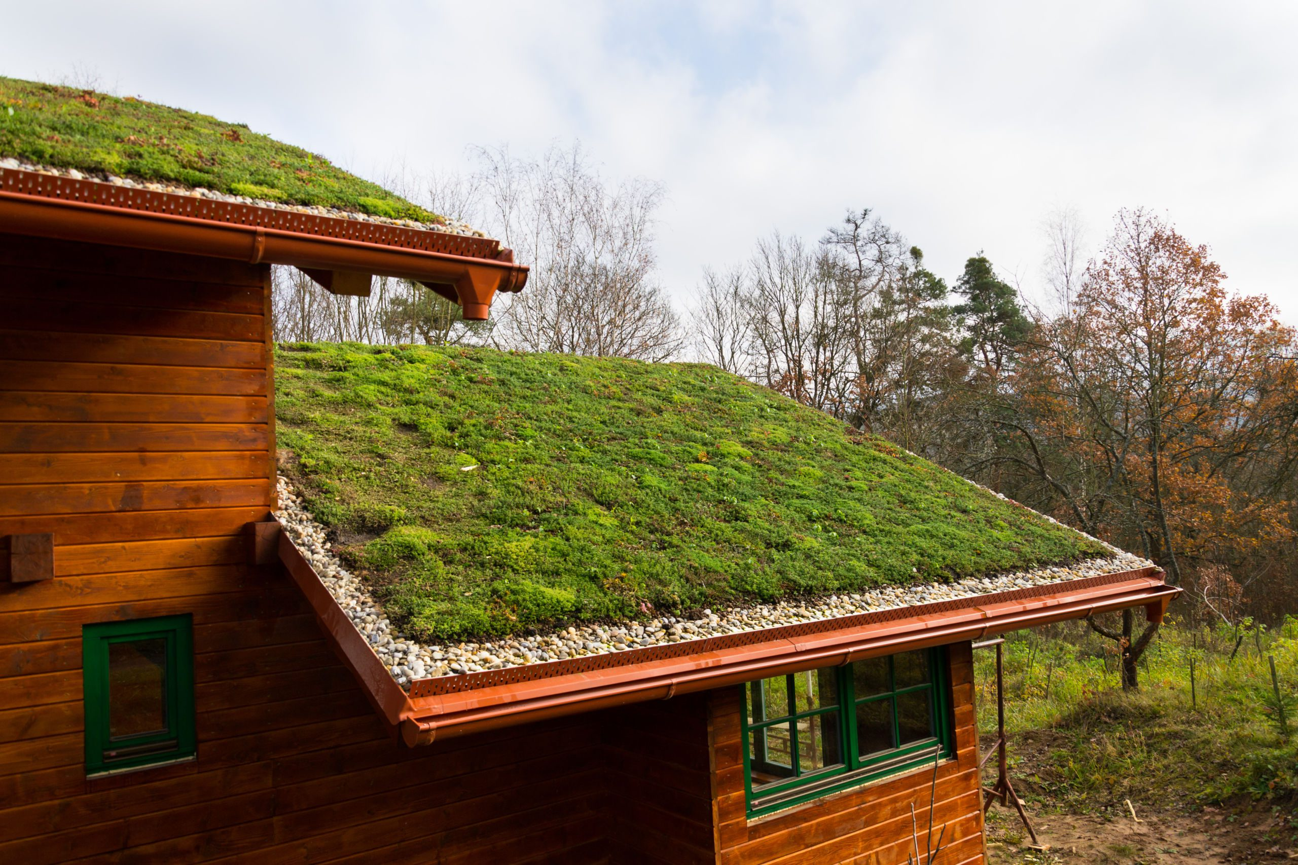 Green Living Roof - Eco Friendly Roofing